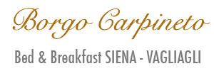 Borgo Carpineto – Ved and breakfast nel chianti a pochi chilometri da Siena e Firenze